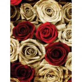 Fototapeta panel - PL0660 - Ruže