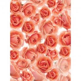 Fototapeta panel - PL0747 - Ruže