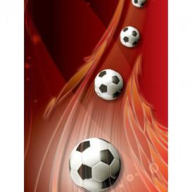 Fototapeta panel - PL0775 - 3D futbalová lopty