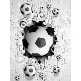 Fototapeta panel - PL0776 - Futbalová lopta