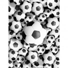 Fototapeta panel - PL0777 - Futbalové lopty