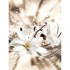 Fototapeta panel - PL0807 - Biely kvet