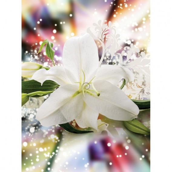 Fototapeta panel - PL0808 - Biely kvet