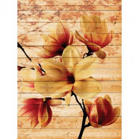 Fototapeta panel - PL0816 - Oranžový kvet