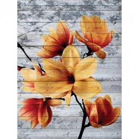 Fototapeta panel - PL0817 - Oranžový kvet