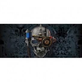Panoramatická fototapeta - FT2409 - Lebka steampunk