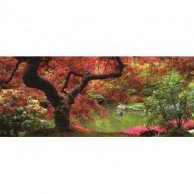 Panoramatická fototapeta - PA0081 - Červený strom