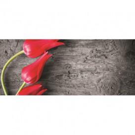Panoramatická fototapeta - PA0085 - Tulipány