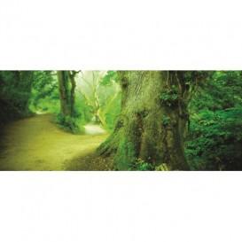 Panoramatická fototapeta - PA0088 - Zelený strom