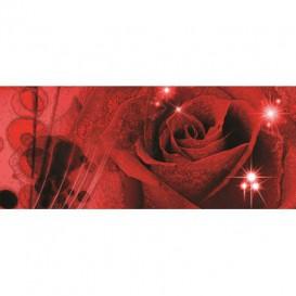 Panoramatická fototapeta - PA0105 - Červená ruža