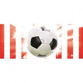 Panoramatická fototapeta - PA0132 - Futbalová lopta