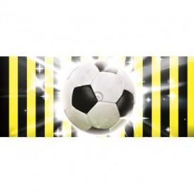 Panoramatická fototapeta - PA0133 - Futbalová lopta