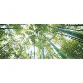 Panoramatická fototapeta - PA0166 - Stromy