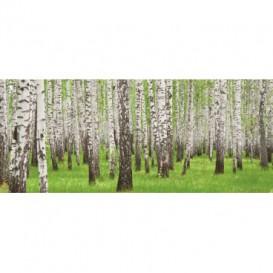 Panoramatická fototapeta - PA0170 - Stromy