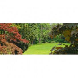 Panoramatická fototapeta - PA0237 - Les