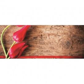 Panoramatická fototapeta - PA0001 - Tulipány