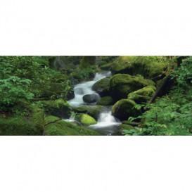 Panoramatická fototapeta - PA0002 - Les