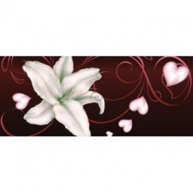 Panoramatická fototapeta - PA0006 - Biely kvet na červenom pozadí