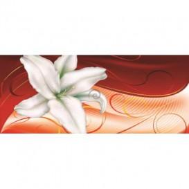 Panoramatická fototapeta - PA0009 - Biely kvet