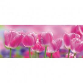 Panoramatická fototapeta - PA0014 - Tulipány