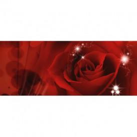 Panoramatická fototapeta - PA0026 - Červená ruža
