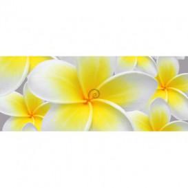 Panoramatická fototapeta - PA0290 - Žltobiely kvet