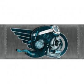 Panoramatická fototapeta - PA4017 - Lebka – pilot sivý