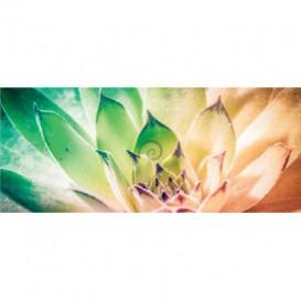 Panoramatická fototapeta - PA4225 - Farebný kvet