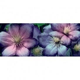 Panoramatická fototapeta - PA4228 - Kvety