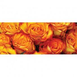 Panoramatická fototapeta - PA4305 - Oranžové ruže