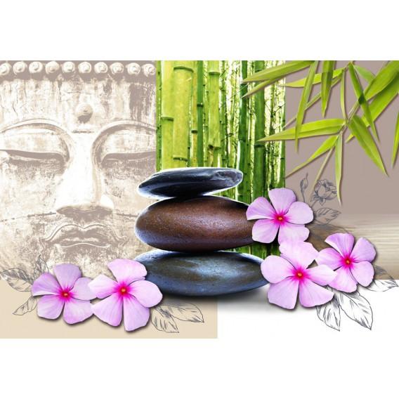 Fototapeta na stenu - FT0139 - Zelené listy , kamienky , kvety