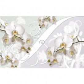 Fototapeta na stenu - FT2862 - Biele kvety na bielom pozadí