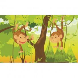 Fototapeta na stenu - FT2012 - Šťastné opice