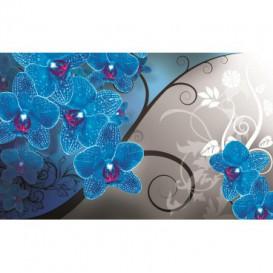 Fototapeta na stenu - FT4507 - Modrá orchidea