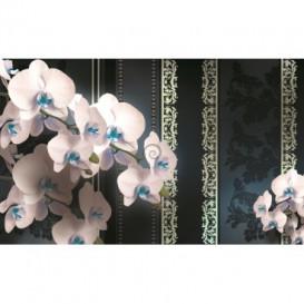 Fototapeta na stenu - FT2893 - Biele kvety
