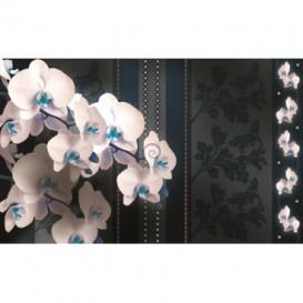 Fototapeta na stenu - FT2898 - Biele kvety