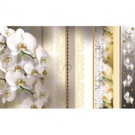 Fototapeta na stenu - FT2901 - Biele kvety