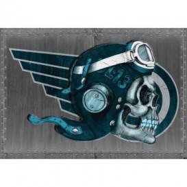 Fototapeta na stenu - FT3523 - Lebka – pilot sivý