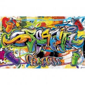 Fototapeta na zeď - FT2026 - Graffiti - barevný styl street