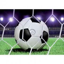 Fototapeta na stenu - FT0497 - Futbalová lopta