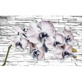 Fototapeta na stenu - FT2966 - Sivé kvety