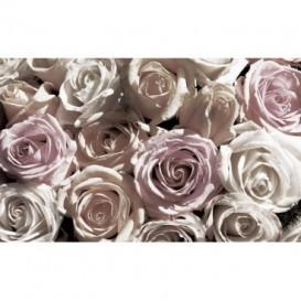Fototapeta na zeď - FT2969 - Bílo - růžové růže