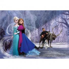 Fototapeta na stenu - FT4555 - Ľadové kráľovstvo Elsa a Anna