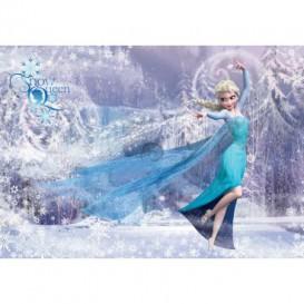 Fototapeta na stenu - FT2076 - Ľadové kráľovstvo Elsa