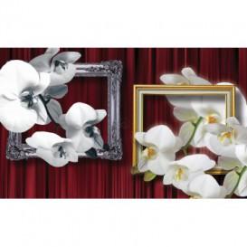 Fototapeta na zeď - FT2986 - Bílé květy v rámech
