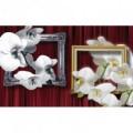 Fototapeta na stenu - FT2986 - Biele kvety v rámoch