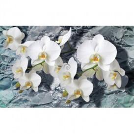 Fototapeta na stenu - FT2994 - Biele kvety na kamennom pozadí