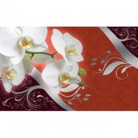 Fototapeta na stenu - FT2998 - Biele kvety na oranžovom pozadí