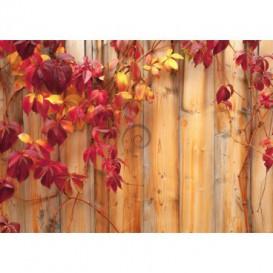 Fototapeta na stenu - FT0142 - Drevená stena