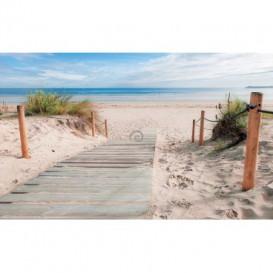 Fototapeta na zeď - FT4606 - Chodník na pláž